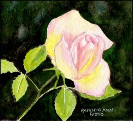 """Little Pink rosebud"" original fine art by Patricia Ann Rizzo"