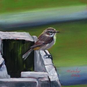 """""""Palm Warbler"""" original fine art by Mariko Irie"""