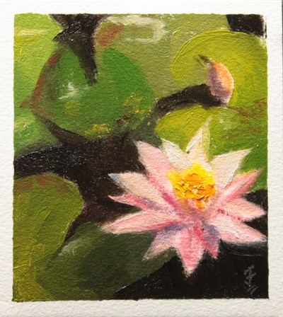 """Water Lily"" original fine art by Jane Frederick"