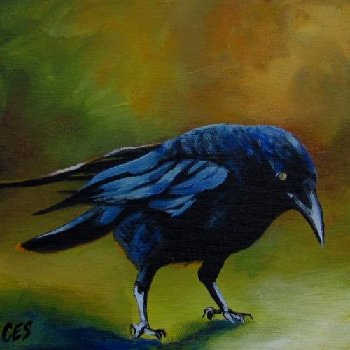"""""""Young Crow"""" original fine art by ~ces~ Christine E. S. Code"""