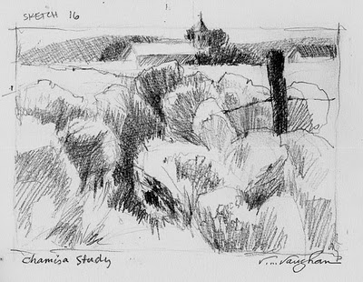 """Chamisa Study"" original fine art by V.... Vaughan"