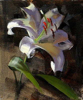 """First Lily --- Sold"" original fine art by Qiang Huang"