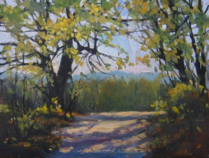 """""""On the Road, Saluta, NC"""" original fine art by Connie Snipes"""