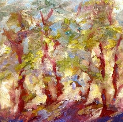 """4162 - Sunlight Through Trees"" original fine art by Sea Dean"