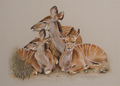 """Greater Kudu"" original fine art by Cheryl Plautz"
