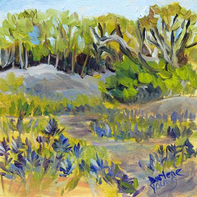 """Camus Meadow"" original fine art by Darlene Young"