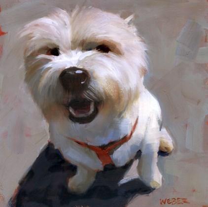 """""""Westie"""" original fine art by Kathy Weber"""