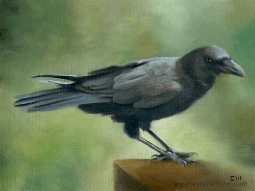 """Crow"" original fine art by Ester Wilson"