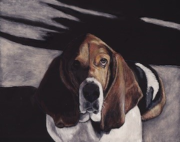 """Basset in the Shadows"" original fine art by Charlotte Yealey"