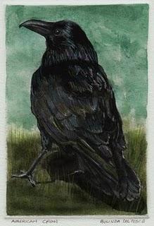 """Monotype: American Crow"" original fine art by Belinda Del Pesco"