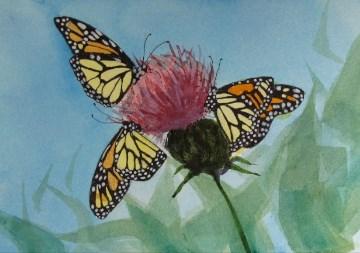 """Monarch#3"" original fine art by Christine Holzschuh"