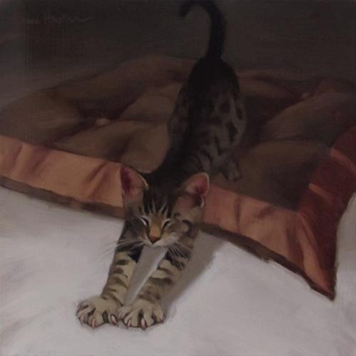 """""""Tabby Stretches"""" original fine art by Diane Hoeptner"""