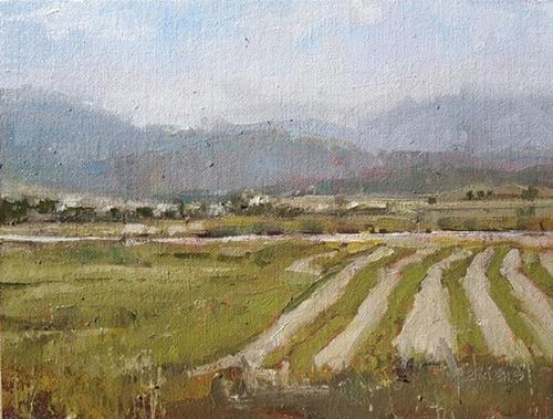 """""""Summer Fields"""" original fine art by Julie Davis"""