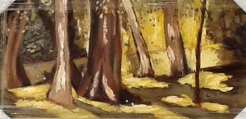 """SUNLIT FOREST"" original fine art by Charlotte Bankhead Hedrick"
