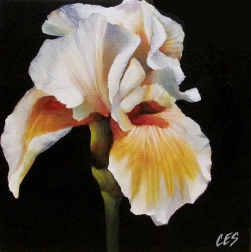 """""""Spring Iris"""" original fine art by ~ces~ Christine E. S. Code"""