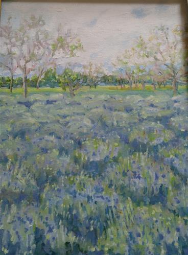 """Lavender Farm"" original fine art by angela scully"