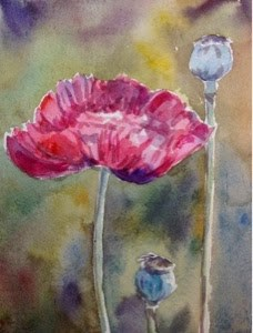 """Pink Poppy"" original fine art by Lyn Gill"
