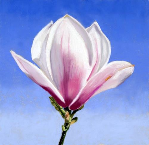 """Magnolia Bud painting"" original fine art by Ria Hills"