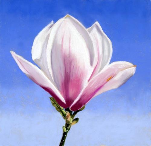 """Magnolia Bud painting"" original fine art by Ria Hills"