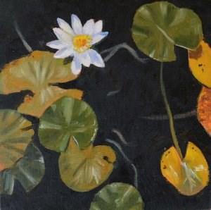 """""""Water Lilies"""" original fine art by Robert Frankis"""