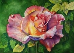 """A Rose for You, 10 x 14 Transparent Watercolor Floral"" original fine art by Donna Pierce-Clark"