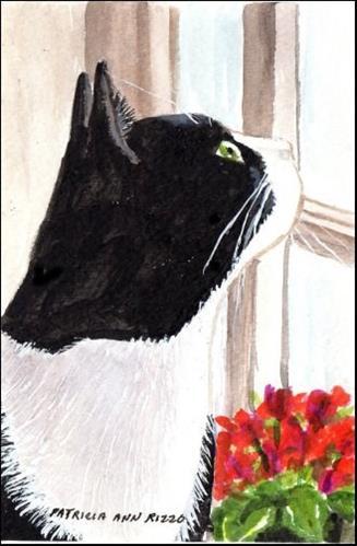 """Window Gazing"" original fine art by Patricia Ann Rizzo"