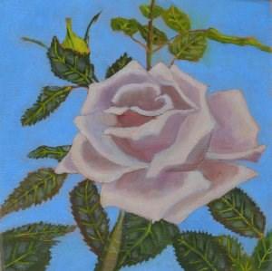 """White Rose"" original fine art by Robert Frankis"