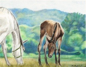 """""""White Mare and Foal"""" original fine art by Charlotte Yealey"""