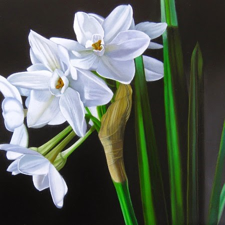 """Paperwhites 10x10"" original fine art by M Collier"