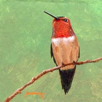 """Hummer on Green"" original fine art by Sue Furrow"