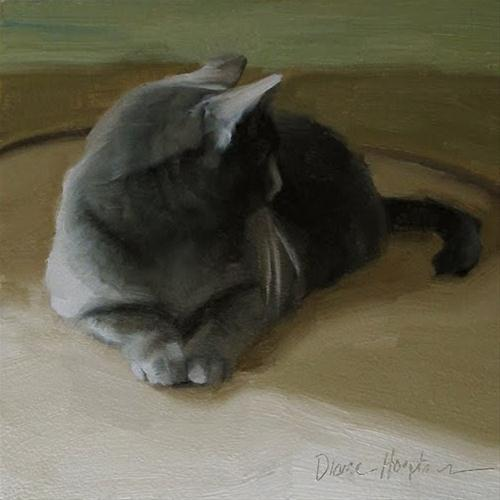 """""""Distracted oil painting gray cat"""" original fine art by Diane Hoeptner"""