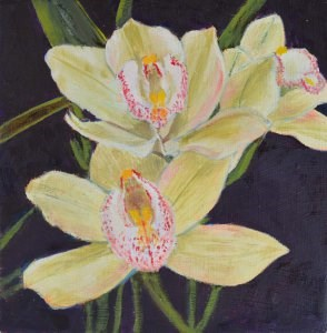 """Orchids"" original fine art by Robert Frankis"