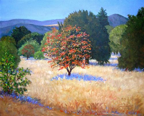 """Autumn,  Cuesta Park Annex"" original fine art by Patricia Musgrave"