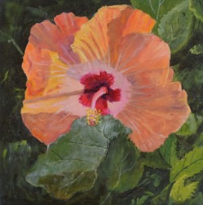 """Hibiscus"" original fine art by Robert Frankis"