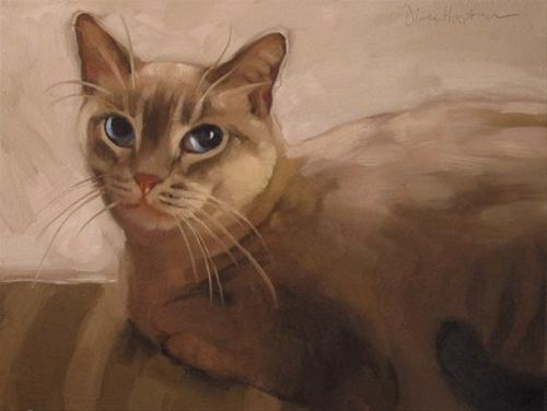 """Chikaboita painting of half siamese cat pet portrait"" original fine art by Diane Hoeptner"