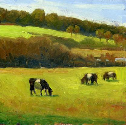 """Cows"" original fine art by Kathy Weber"