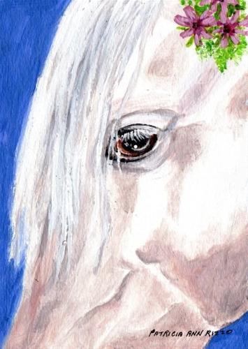 """""""White Horse Head Study"""" original fine art by Patricia Ann Rizzo"""
