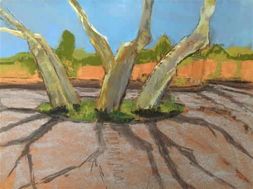 """Sedona Syccamores"" original fine art by Mary Weil"