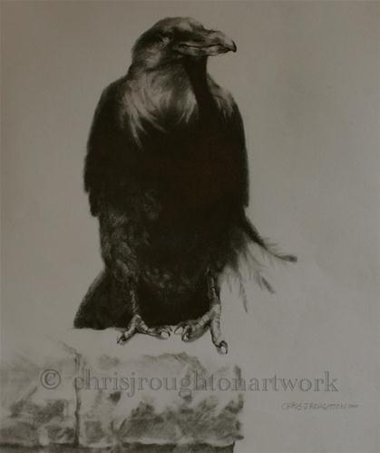 """Ravens of Bryce Canyon #1"" original fine art by C J Roughton"