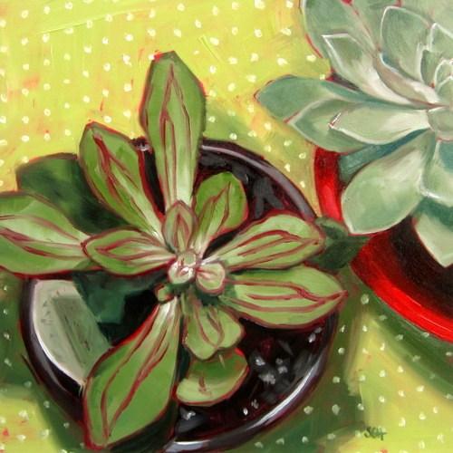 """Succulent  #2"" original fine art by Sandy Haynes"