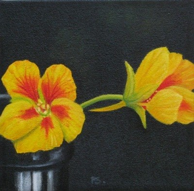 """Nasturtium on black III"" original fine art by Pera Schillings"