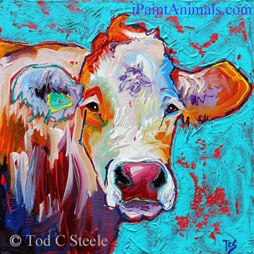 """Cow Painting, 'Milady Lovejoy' - 12x12 - by Tod C Steele"" original fine art by Tod Steele"