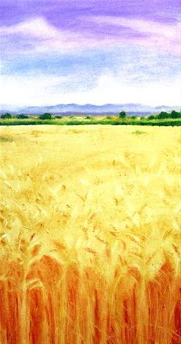 """""""Amber Waves"""" original fine art by Karen Roncari"""