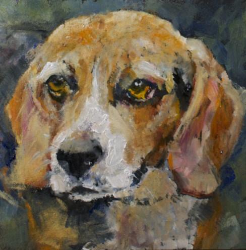 """Beagle Study"" original fine art by Sue Churchgrant"