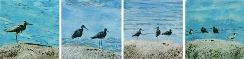 """Four Birds on the Rocks ..."" original fine art by Heather Douglas"