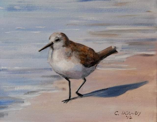 """Seabird Series IV"" original fine art by Christina Dowdy"
