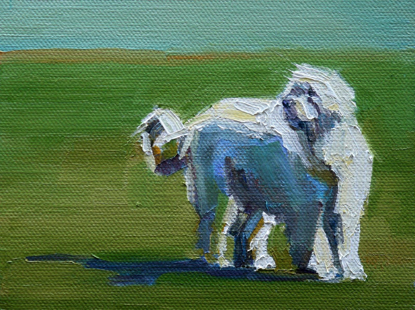 """great white"" original fine art by Carol Carmichael"