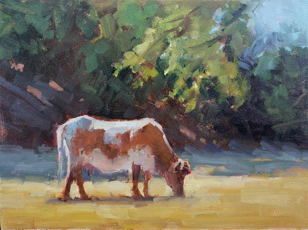 """Sunlit Cow"" original fine art by Barbie Smith"