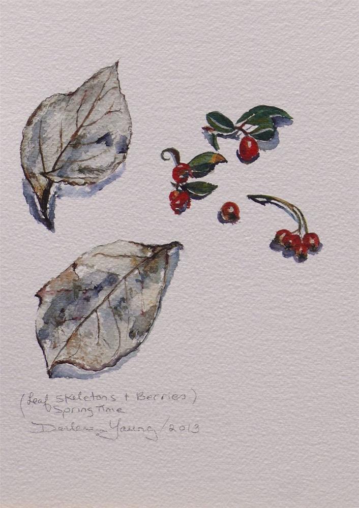 """600 Leaf Skeletons and Berries"" original fine art by Darlene Young"
