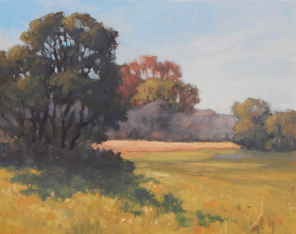 """Early Morning Shadows"" original fine art by Lisa Kyle"